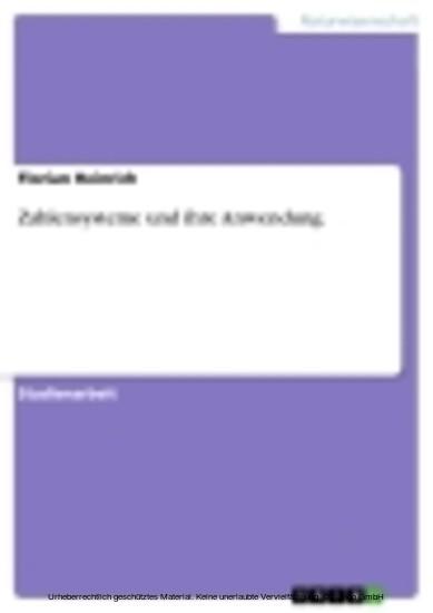 Zahlensysteme und ihre Anwendung - Blick ins Buch