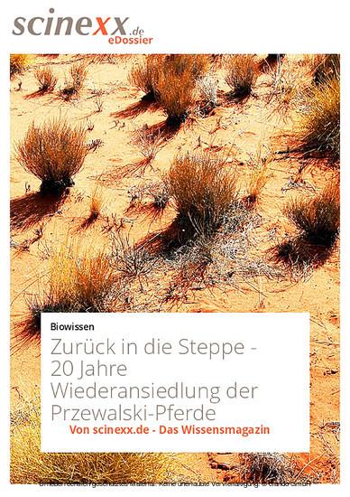 Zurück in die Steppe - Blick ins Buch