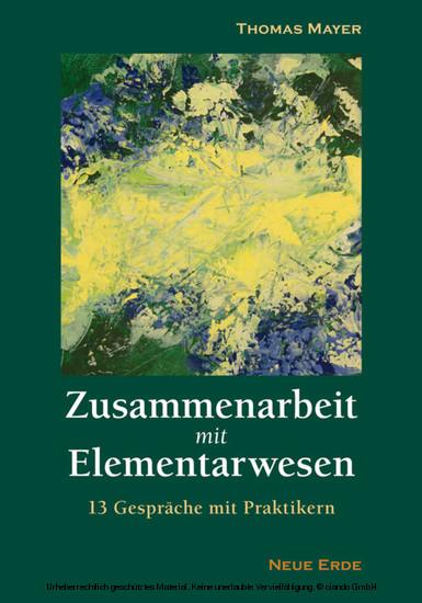 Zusammenarbeit mit Elementarwesen - Blick ins Buch