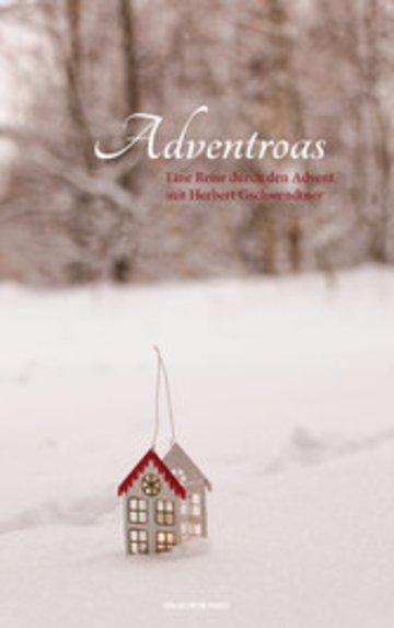 eBook Adventroas Cover