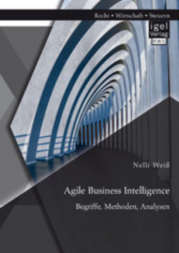 eBook Agile Business Intelligence. Begriffe, Methoden, Analysen Cover