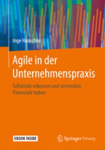 eBook Agile in der Unternehmenspraxis Cover