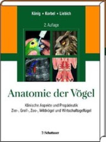 Anatomie der Vögel - Klinische Aspekte und Propädeutik. Zier-, Greif ...