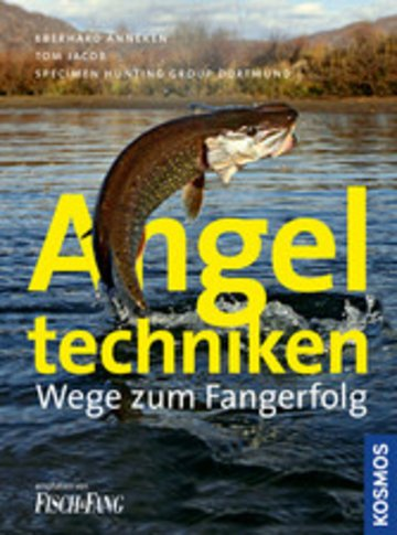 eBook Angeltechniken Cover