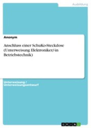 eBook Anschluss einer SchuKo-Steckdose (Unterweisung Elektroniker/-in Betriebstechnik) Cover