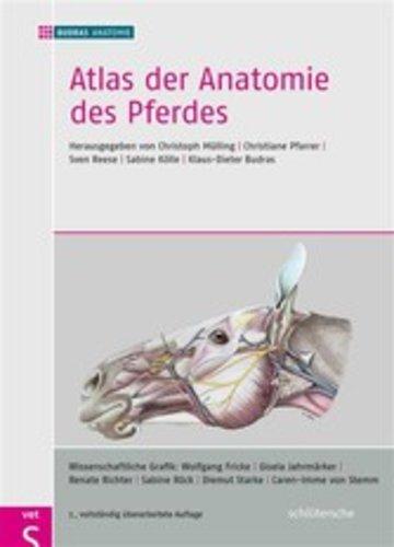 eBook Atlas der Anatomie des Pferdes Cover