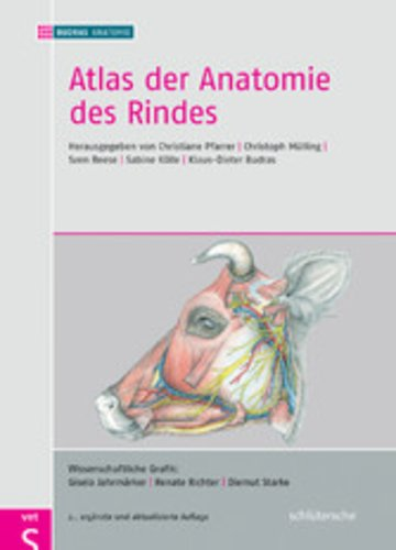 Atlas der Anatomie des Rindes - Inklusive Supplement - PDF eBook ...