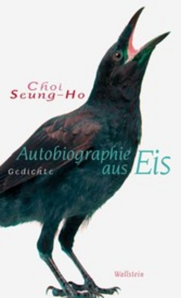 eBook Autobiographie aus Eis Cover