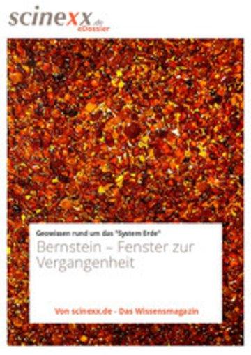 eBook Bernstein Cover