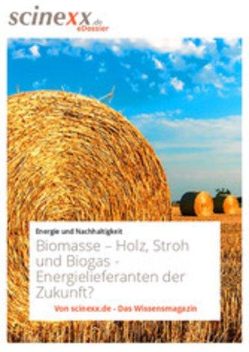 eBook Biomasse Cover