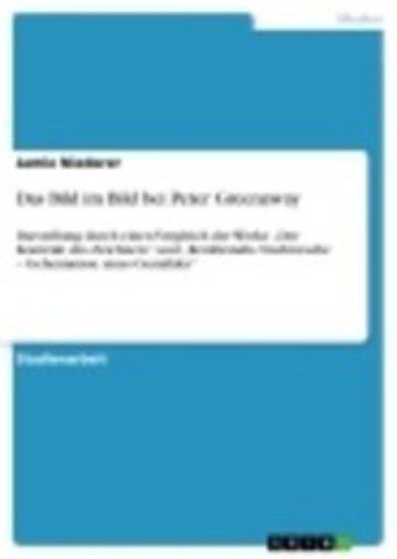 eBook Das Bild im Bild bei Peter Greenaway Cover