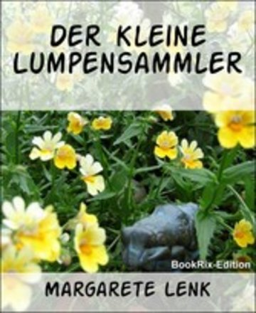 eBook Der kleine Lumpensammler Cover