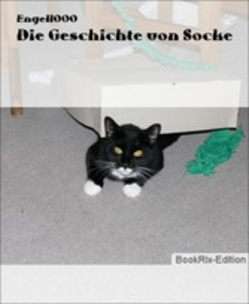 eBook Die Geschichte von Socke Cover