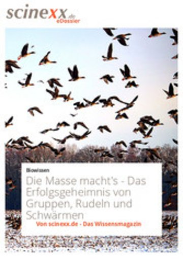 eBook Die Masse macht's Cover