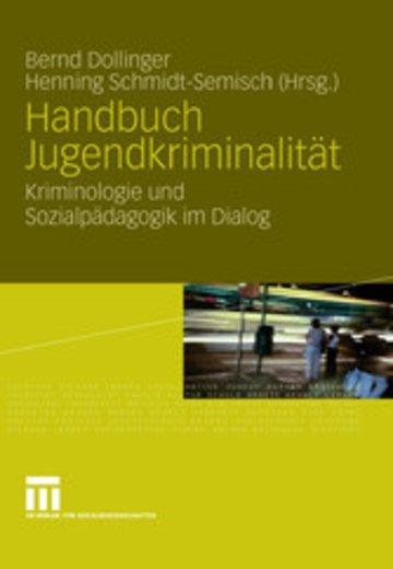 eBook Handbuch Jugendkriminalität Cover