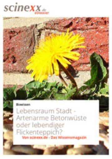eBook Lebensraum Stadt Cover