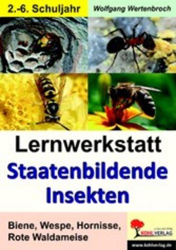 eBook Lernwerkstatt Staatenbildende Insekten Cover