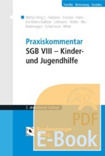 eBook Praxiskommentar SGB VIII - Kinder- und Jugendhilfe (E-Book) Cover