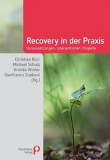 eBook Recovery in der Praxis Cover