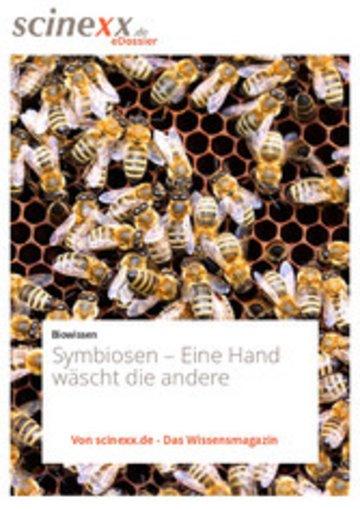 eBook Symbiosen Cover