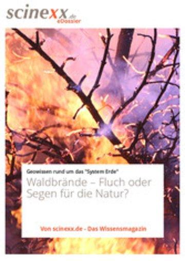 eBook Waldbrände Cover
