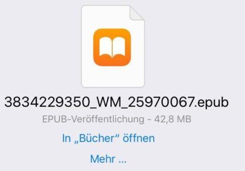"Screenshot zum link ""in Bücher öffnen"""